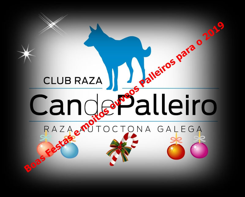 Feliz Navidad-Bo Nadal 2018