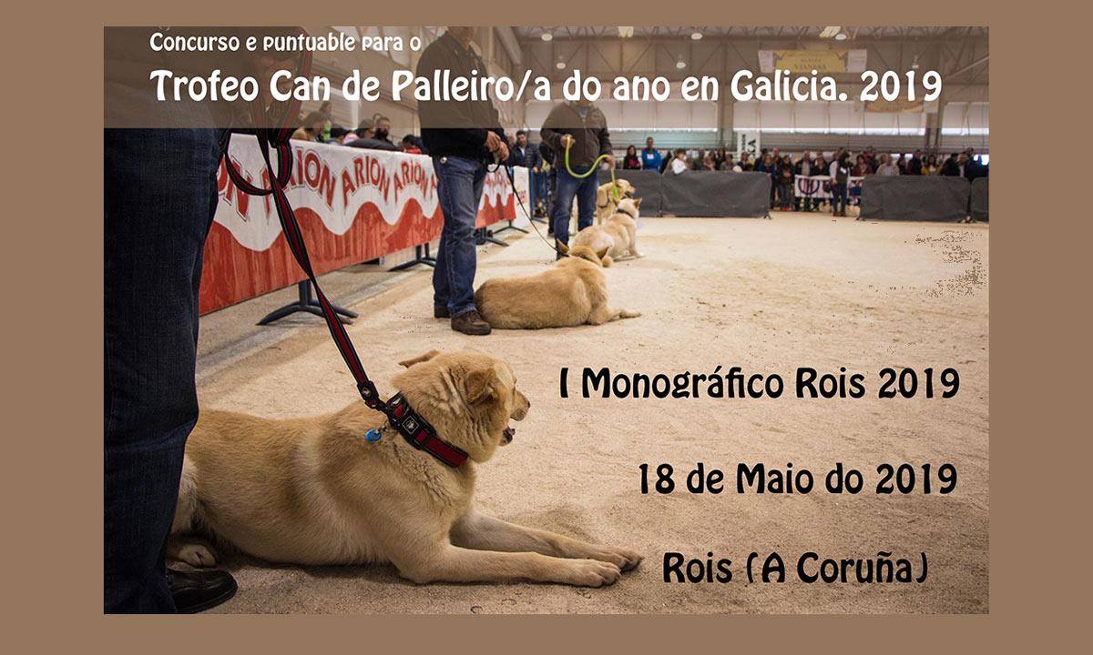 monografico-ix can de palleiro