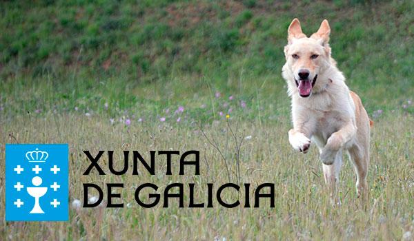 Xunta de Galicia - Consellería de Medio Rural