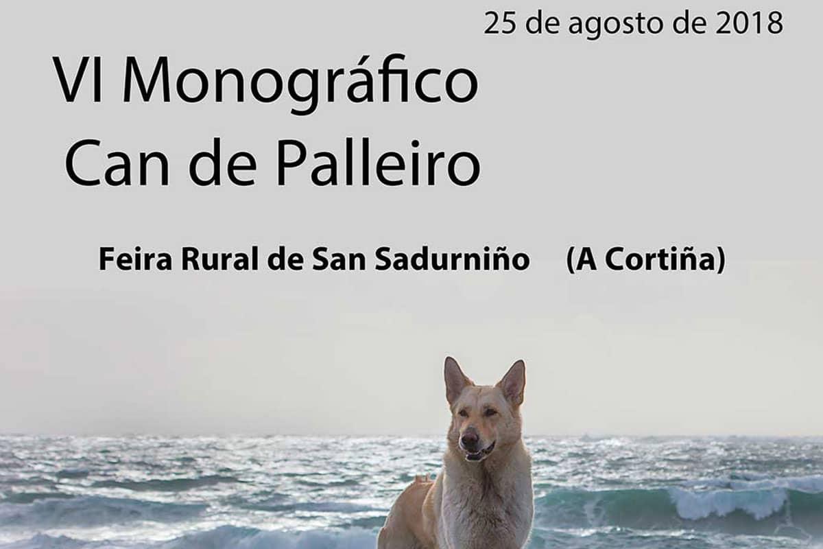 VI monográfico Can de Palleiro