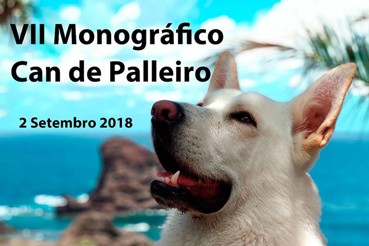 VII monográfico Can de Palleiro