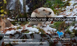 """VIII Concurso de fotografía """"Can de Palleiro"""""""