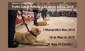 monografico ix can de palleiro fotografia