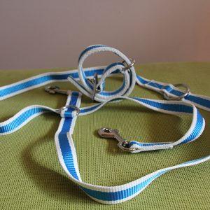 Oferta collar + correa modelo Galicia