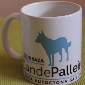 Taza Can de Palleiro Raza autóctona