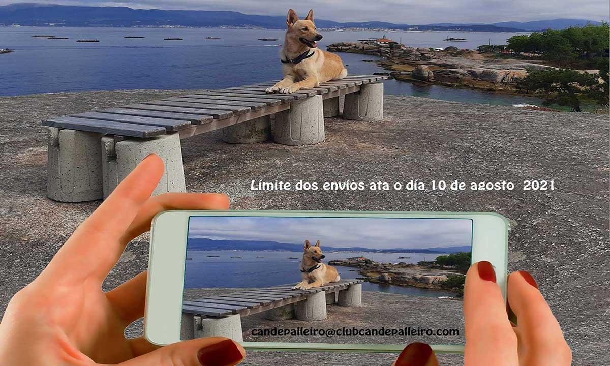 """X Concurso de fotografía """"Can de Palleiro"""""""