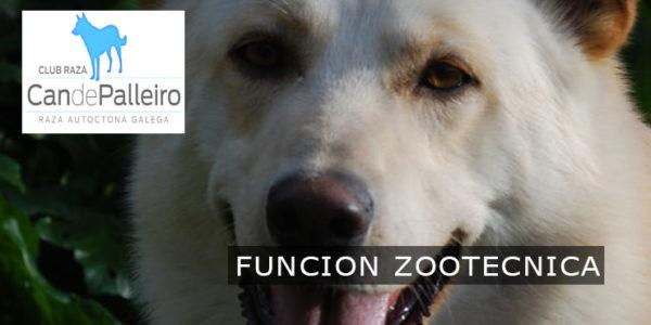 Función Zootécnica