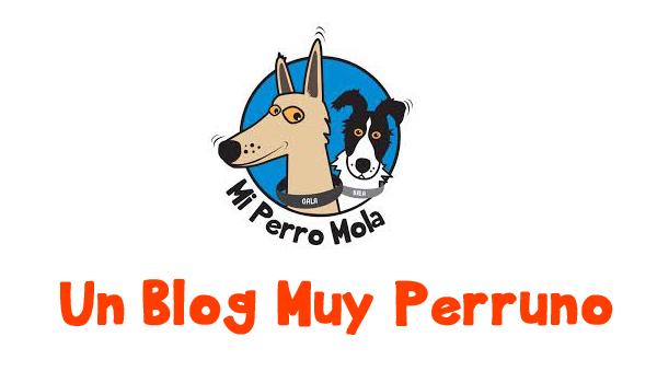 Mi perro mola. Blog sobre perros.