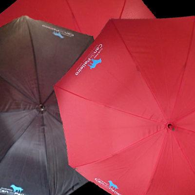 Paraguas Can de Palleiro